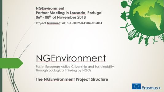 NGEnvironment - The Project
